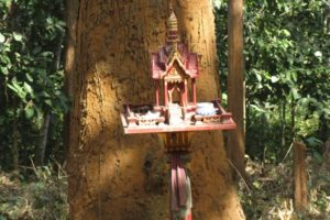 Fabulous Friday Foto: Tree Spirit House – Thailand Shrine Photo