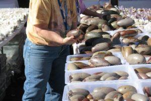 2012 Tucson Gem Show: My Favorite Healing Stone Vendors