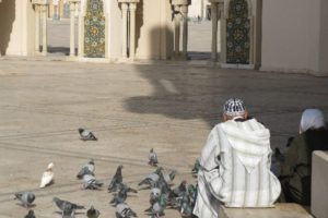 Fabulous Friday Foto:  Man and Woman feeding pigeons, Hassan II Mosque, Casablanca