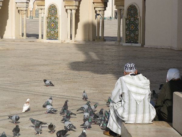 Fabulous Friday Foto:  Man and Woman feeding pigeons, Hassan II Mosque, Casablanca