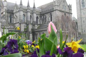 A Springtime/Easter Photo for you!