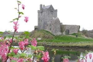 Fabulous Friday Foto: Ireland Castle Photo