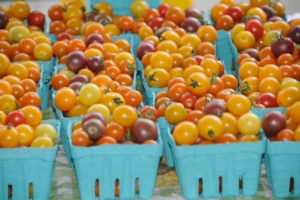 The Importance of Including Local Farmers Markets in Your Travel Plans