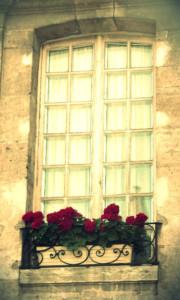 Pretty Window Paris