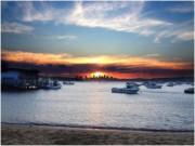 Sydney Photo 1