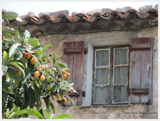 Eze village was filled with beautiful scenes like this beautiful, weather looking window.