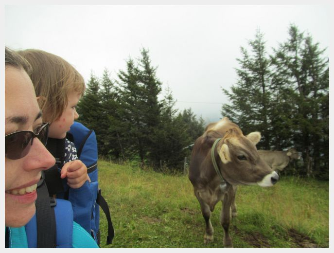 Like dairy? Eating good Swiss dairy is another way to travel Switzerland on a budget