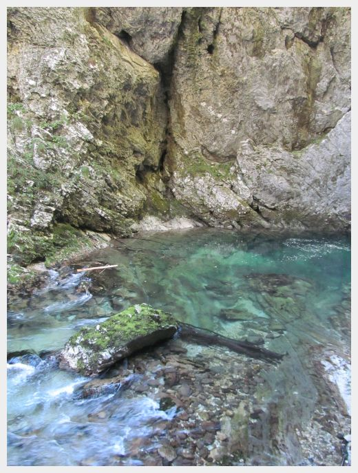 The beautiful blue water of the Vintgar Gorge Slovenia