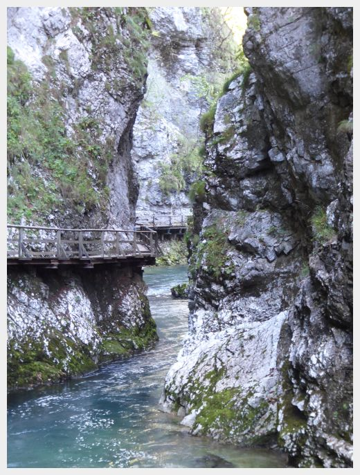 The walkway down the Vintgar Gorge Slovenia was attached right to the side of the wall at some points.
