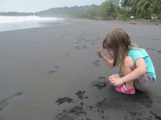 Playa Negra, Caribbean Coast of Costa Rica