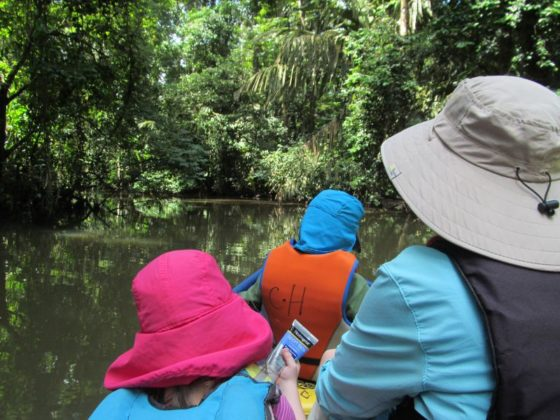 Boat tour in Tortuguero National Park
