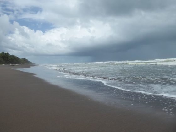 The beautiful Beach at Tortuguero National Park
