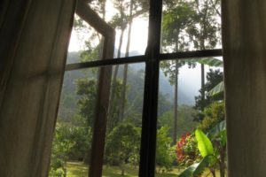Welcome to Paradise: A Chiang Dao Nest Review