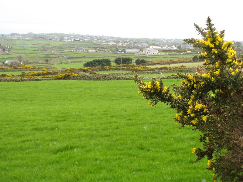 St Patricks Day in Ireland