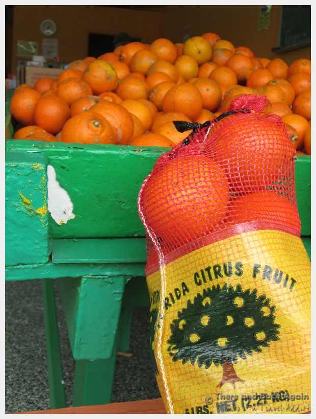 Markets of The World:  Local Farmers Markets in Orlando Florida