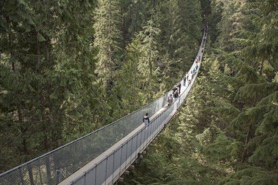 The Best Family Vacation Deals - Vancouver -C apilano Suspension Bridge