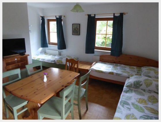 Apartment, Farm Stay Dolnar Krainer Lake Bled