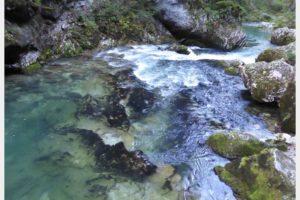 Hiking the Vintgar Gorge Slovenia with Kids!