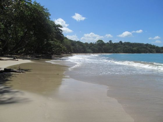 PLaya Punta Uva is one of the most family friendly beaches near Playa Chuquita Costa Rica