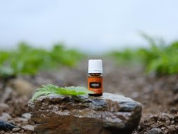 Valerian is a great oil for helping you sleep while traveling!