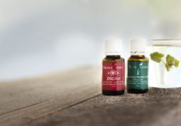 Peppermint and Dizige - A digestive support powerhouse!
